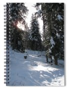Light And Shadow On A Snowy Landscape Spiral Notebook