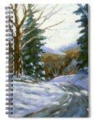 Light Breaks Through The Pines Spiral Notebook