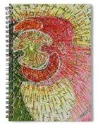Light Dance Spiral Notebook