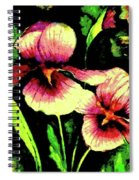 Light Dispels Darkness Spiral Notebook
