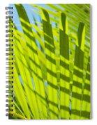 Light Green Palm Leaves Spiral Notebook