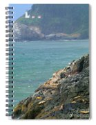 Light House And Sea Lions Spiral Notebook