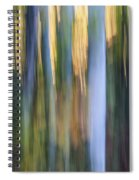 Light In Evening Forest Spiral Notebook