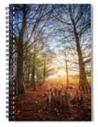 Light In The Cypress Trees II Spiral Notebook