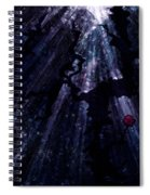 Light In The Darkness Spiral Notebook