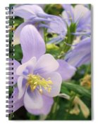 Light Lavender Flowers Spiral Notebook