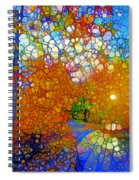 Light On The Autumn Path Spiral Notebook