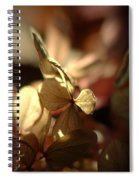 Light Passion... Spiral Notebook