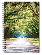 Light Through Live Oak Lane Spiral Notebook