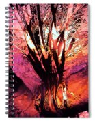 Light Through The Trees  Spiral Notebook