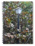 Lighted Trees Spiral Notebook