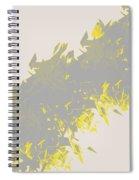 Lightening 2  Spiral Notebook