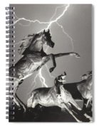 Lightning At Horse World Spiral Notebook