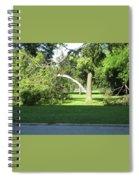 Lightning Strike Spiral Notebook