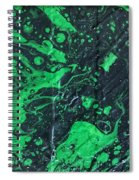 LII Spiral Notebook