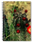 Like A Little Red Star Spiral Notebook