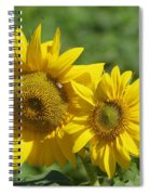 Like Two Smiles In Bloom Spiral Notebook
