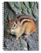 Lil Chipmunk Spiral Notebook