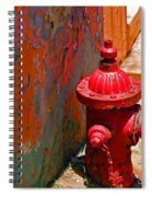 Lil Red Spiral Notebook