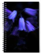 Bluebell Abyss Spiral Notebook