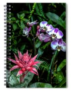 Lilac And Pink Spiral Notebook