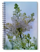 Lilac Flowers Spiral Notebook
