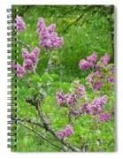 Lilac In The Spring Meadow Spiral Notebook