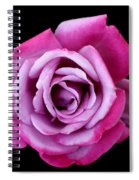 Lilac Rose Spiral Notebook