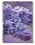 Lilac Spring Spiral Notebook