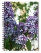 Lilacs In Spring Spiral Notebook