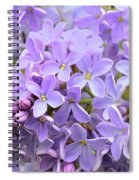 Lilacs-lavender Lovely  Spiral Notebook