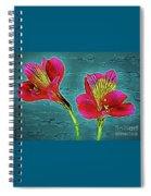 Lilies 18-10 Spiral Notebook
