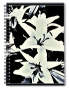 Lilies All Aglow Spiral Notebook