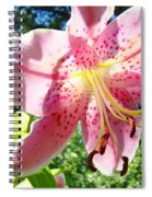Lilies Art Prints Pink Lily Flowers 2 Giclee Prints Baslee Troutman Spiral Notebook