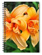 Lilies Collection - 1 Spiral Notebook
