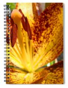 Lilies Glowing Orange Lily Flower Floral Art Print Canvas Baslee Troutman Spiral Notebook