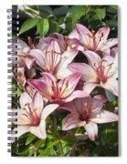Lilies In Pink Spiral Notebook