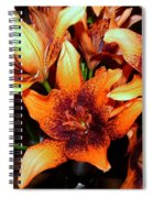 Lilies In The Shadow Spiral Notebook
