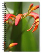 Lilies On Fire II Spiral Notebook