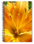 Lilies Orange Yellow Lily Flower 1 Giclee Art Prints Baslee Troutman Spiral Notebook