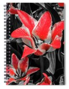 Lilies With A Splash Of Color Spiral Notebook