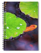 Lillies On Water Spiral Notebook