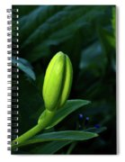 Lilly Bud Spiral Notebook