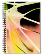 Lilly Flower Pastel Spiral Notebook