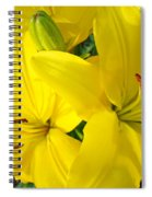 Lilly Flowers Art Prints Yellow Lilies Floral Baslee Troutman Spiral Notebook