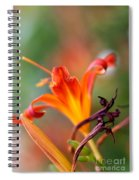 Lilly Flowers Spiral Notebook