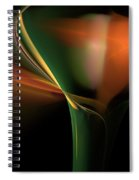 Lilly Of Light Spiral Notebook