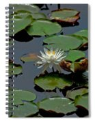 Lilly On The Pad Spiral Notebook