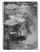 Lilly Pond Spiral Notebook