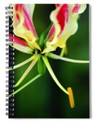Lilly Spiral Notebook